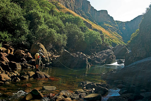 Southern Drakensberg Trout stream