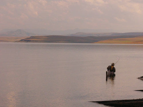 Flyishing for Yellowfish on the Sterkfontein Dam